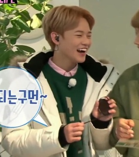 chenle, low quality and chenle lq