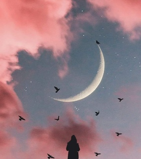 moon, birds and dreamy