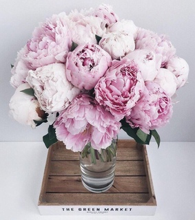 girly, peonies and bouquet