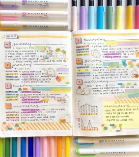 college, theme and bullet journal