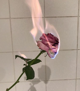 wallpaper, fire and pink