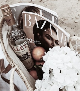rose, magazines and trend