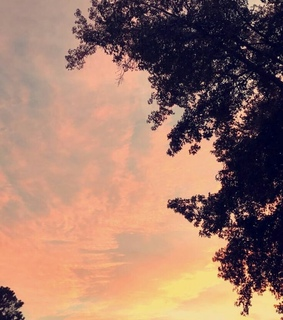 nature, photography and sky
