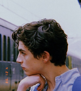 timothee chalamet, elio perlman and call me by your name