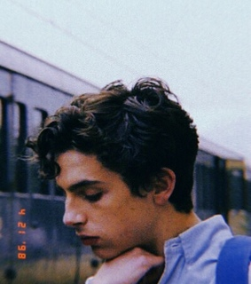 elio perlman, call me by your name and timothee chalamet