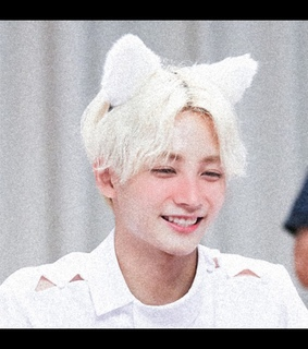 jeonghan, cat and 17