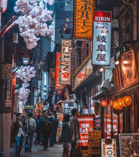 adventure, travel and tokyo