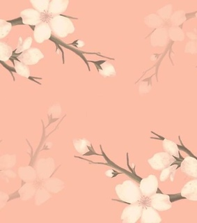 lost in japan, shawn mendes and flowers