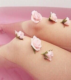 rose, water and bagno