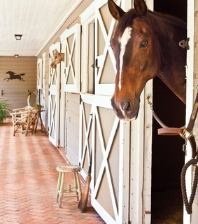 equestrian, barn and country living