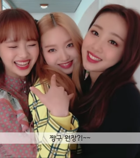 loona tv, loona and lq