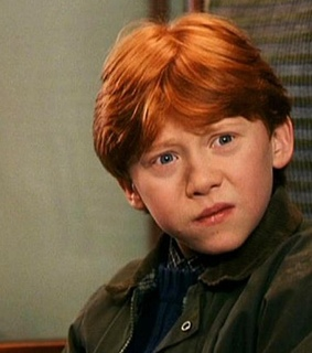harry potter, ron and weasly