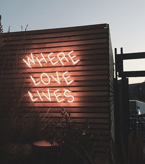 where love lives, neon sign and love