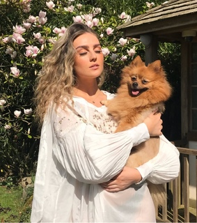 singer, dog and perrie edwards