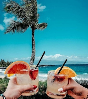 drinks, palmtrees and sea