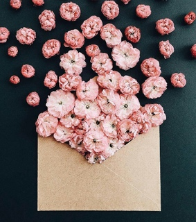 pink, Letter and packet
