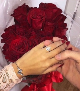 want, proposal and roses