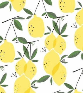 screen, wallpapers and lemons