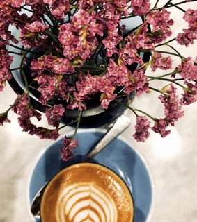 flower, news and coffee