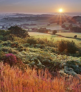 landscape, nature and england