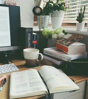 books, plant and studying