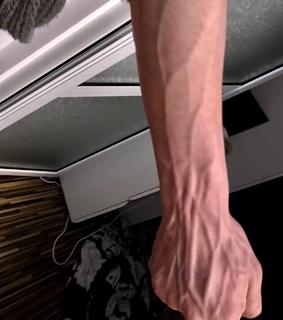 muscle, we love it and veins