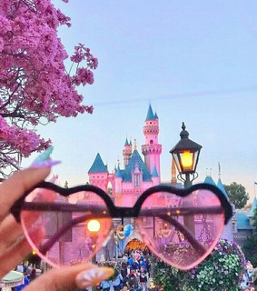 spring, love and disneyland