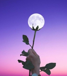 moon, pink and sky