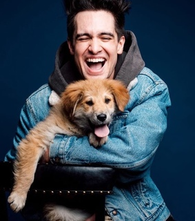 patd, brendon urie and beebo