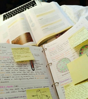 inspiration, biology and school