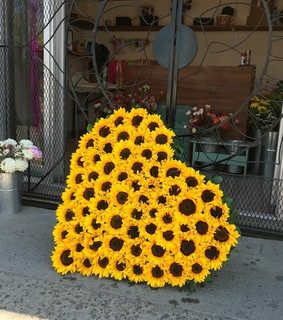 flowers, heart and sunflower