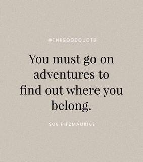 happiness, adventurous and friends quote