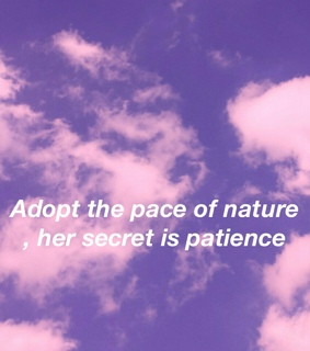 secret, aesthetic and pace