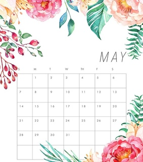flowers, may and bujo