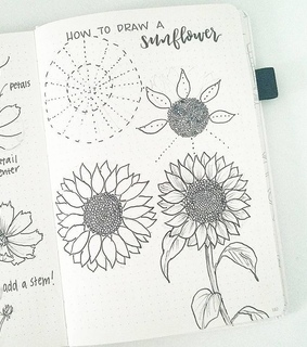 drawing, sunflower and agenda