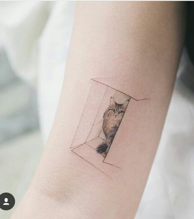 minimalist, cute and cat