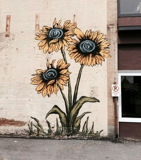 art, aesthetic and flowers