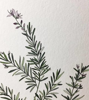 leaves, drawing and painting