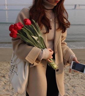tumblr, flowers and red roses