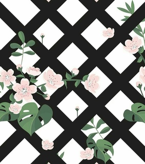 backgrounds, patterns and ecrã