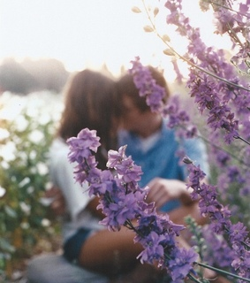 cute couple, flowers and spring