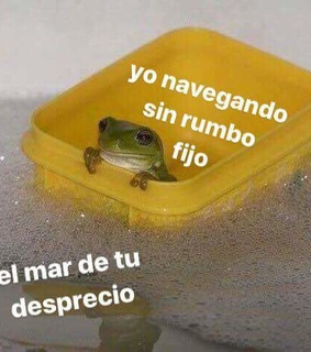 equis de, memes and el mar de tu desprecio