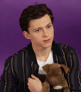 tom holland, layout and Avengers