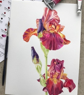 flowers, painting and drawing