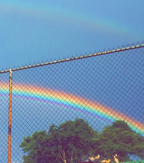 nature, aesthetic and rainbow