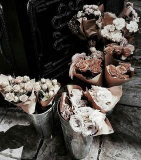 flowers, rose and perfection