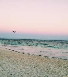 travel, weheartit and beach