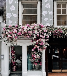 building, tumblr and flowers