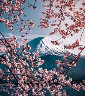 spring, yes and nature