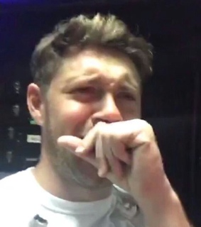 one direction, niall horan and memes